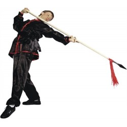 Tai Chi/Wushu Uniform black