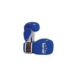 "Boxing gloves TOP TEN ""Thaiboxing"" blue 10oz"