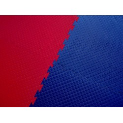 """Double Competition"" redt/blue 100 cm x 100 cm x 2 cm"