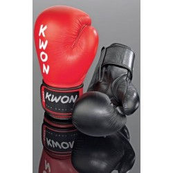 Boxing glove Ergo Champ 10oz