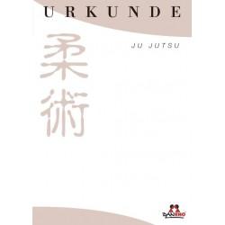 Certificate Ju Jutsu