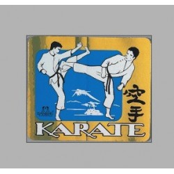 Autocollants PVC Combat Karate metallique Danrho